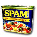 Hormel Spam 50% Less Salt/Sodium