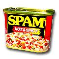 Hormel Spam Hot & Spicy